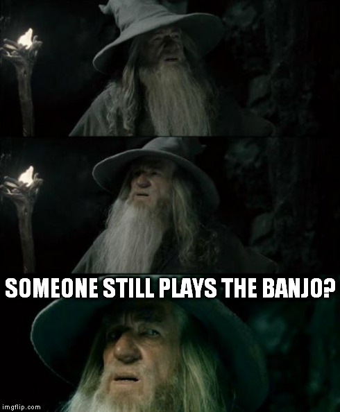Confused Gandalf Meme | SOMEONE STILL PLAYS THE BANJO? | image tagged in memes,confused gandalf | made w/ Imgflip meme maker