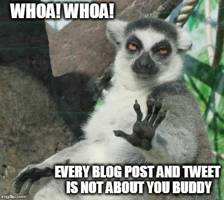 Stoner Lemur Meme | WHOA! WHOA! EVERY BLOG POST AND TWEET IS NOT ABOUT YOU BUDDY | image tagged in memes,stoner lemur | made w/ Imgflip meme maker
