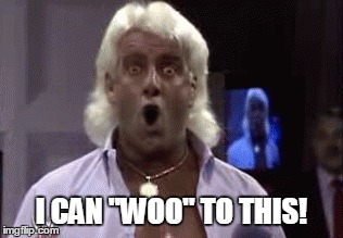 Image result for ric flair woo