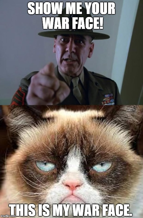 Grumpy Warface | SHOW ME YOUR WAR FACE! THIS IS MY WAR FACE. | image tagged in grumpy cat,memes,war face | made w/ Imgflip meme maker