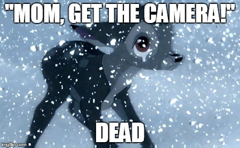 "Bad Luck Bambi | ""MOM, GET THE CAMERA!"" DEAD 