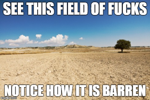 Image Tagged In Barren Fieldno Fucks Giveni Dont Give A Fuckfield Of Fucksnoneidfwu