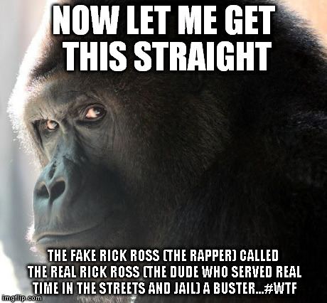 Now whose the Buster | NOW LET ME GET THIS STRAIGHT THE FAKE RICK ROSS (THE RAPPER) CALLED THE REAL RICK ROSS (THE DUDE WHO SERVED REAL TIME IN THE STREETS AND JAI | image tagged in animals,rick ross,humor,just checkin,quitlivingbackwards,gorilla | made w/ Imgflip meme maker