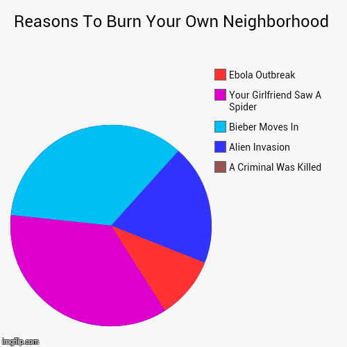 Reasons To Burn Your Own Neighborhood | A Criminal Was Killed, Alien Invasion, Bieber Moves In, Your Girlfriend Saw A Spider, Ebola Outbreak | image tagged in funny,pie charts | made w/ Imgflip pie chart maker
