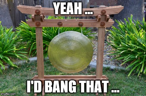 Bang a Gong ... Get it On | YEAH ... I'D BANG THAT ... | image tagged in gong,sex | made w/ Imgflip meme maker