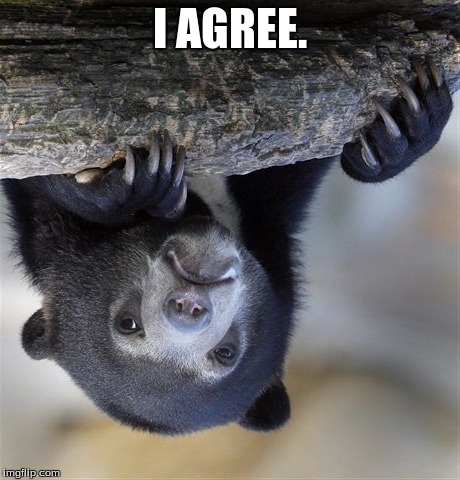 Confession Bear Meme | I AGREE. | image tagged in memes,confession bear | made w/ Imgflip meme maker
