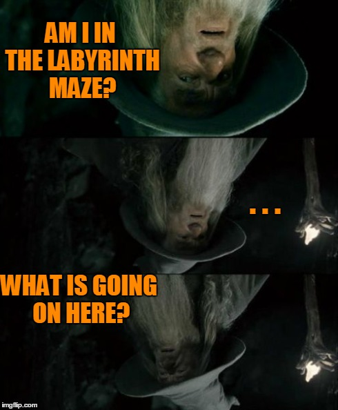 Confused Gandalf Meme | AM I IN THE LABYRINTH MAZE? . . . WHAT IS GOING ON HERE? | image tagged in memes,confused gandalf | made w/ Imgflip meme maker