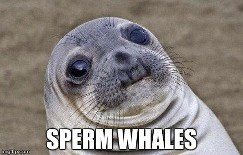 Awkward Moment Sealion Meme | SPERM WHALES | image tagged in memes,awkward moment sealion | made w/ Imgflip meme maker