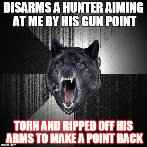 The Literal-Insane Mind | DISARMS A HUNTER AIMING AT ME BY HIS GUN POINT TORN AND RIPPED OFF HIS ARMS TO MAKE A POINT BACK | image tagged in memes,insanity wolf | made w/ Imgflip meme maker