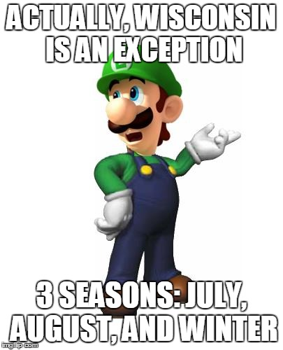 Logic Luigi | ACTUALLY, WISCONSIN IS AN EXCEPTION 3 SEASONS: JULY, AUGUST, AND WINTER | image tagged in logic luigi | made w/ Imgflip meme maker