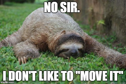 ezxwm sleeping sloth imgflip,Sloth Meme Images