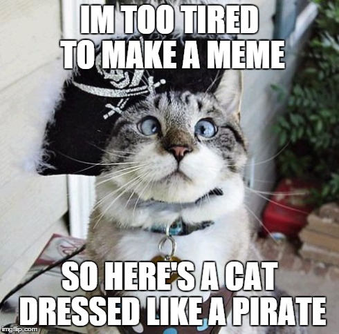 Spangles Meme | IM TOO TIRED TO MAKE A MEME SO HERE'S A CAT DRESSED LIKE A PIRATE | image tagged in memes,spangles | made w/ Imgflip meme maker