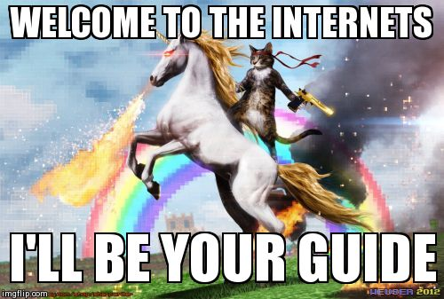 welcome to the internets | WELCOME TO THE INTERNETS I'LL BE YOUR GUIDE | image tagged in internet,funny,cats | made w/ Imgflip meme maker