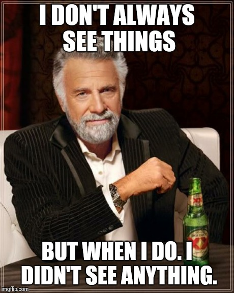 The Most Interesting Man In The World Meme | I DON'T ALWAYS SEE THINGS BUT WHEN I DO. I DIDN'T SEE ANYTHING. | image tagged in memes,the most interesting man in the world | made w/ Imgflip meme maker