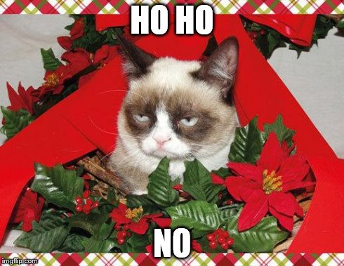 Grumpy Cat Mistletoe | HO HO NO | image tagged in memes,grumpy cat mistletoe,grumpy cat | made w/ Imgflip meme maker