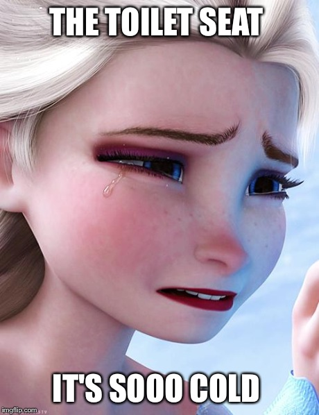 Elsa upset | THE TOILET SEAT IT'S SOOO COLD | image tagged in elsa upset | made w/ Imgflip meme maker