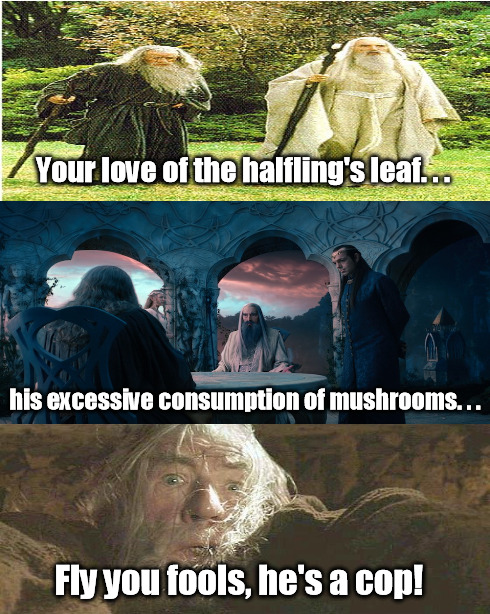 Gandalf the Paranoid | Your love of the halfling's leaf. . . his excessive consumption of mushrooms. . . Fly you fools, he's a cop! | image tagged in memes,gandalf,saruman,the lord of the rings,lotr | made w/ Imgflip meme maker