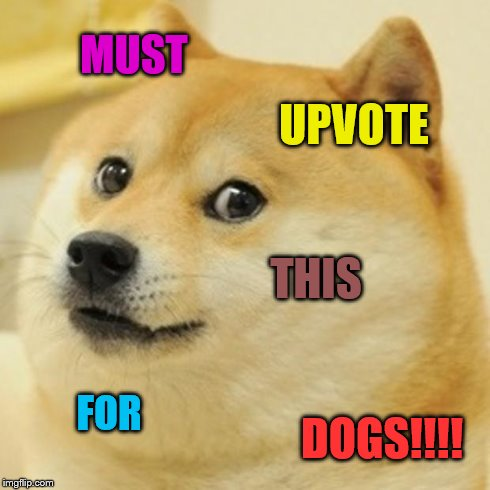 Doge Meme | MUST UPVOTE THIS FOR DOGS!!!! | image tagged in memes,doge | made w/ Imgflip meme maker