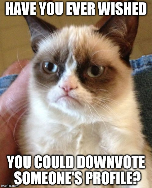Grumpy Cat | HAVE YOU EVER WISHED YOU COULD DOWNVOTE SOMEONE'S PROFILE? | image tagged in memes,grumpy cat | made w/ Imgflip meme maker