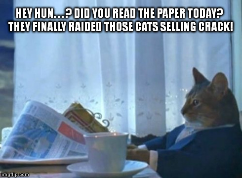 I Should Buy A Boat Cat Meme | HEY HUN. . . ? DID YOU READ THE PAPER TODAY? THEY FINALLY RAIDED THOSE CATS SELLING CRACK! | image tagged in memes,i should buy a boat cat | made w/ Imgflip meme maker
