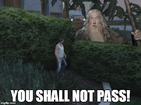 Damn those bushes... | YOU SHALL NOT PASS! | image tagged in gandalf you shall not pass,gta 5,meme,bushes,micheal,sfw | made w/ Imgflip meme maker