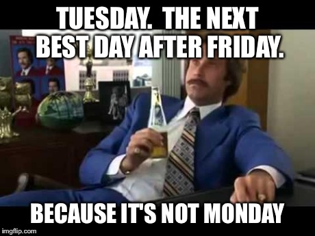 Well That Escalated Quickly | TUESDAY.  THE NEXT BEST DAY AFTER FRIDAY. BECAUSE IT'S NOT MONDAY | image tagged in memes,well that escalated quickly | made w/ Imgflip meme maker
