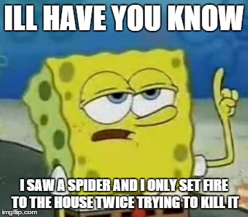 I'll Have You Know Spongebob | ILL HAVE YOU KNOW I SAW A SPIDER AND I ONLY SET FIRE TO THE HOUSE TWICE TRYING TO KILL IT | image tagged in memes,ill have you know spongebob | made w/ Imgflip meme maker
