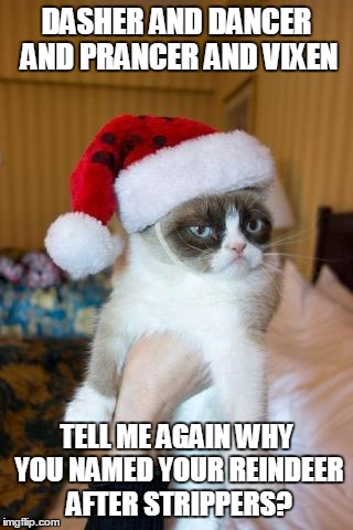 Grumpy Cat Christmas | DASHER AND DANCER AND PRANCER AND VIXEN TELL ME AGAIN WHY YOU NAMED YOUR REINDEER AFTER STRIPPERS? | image tagged in memes,grumpy cat christmas,grumpy cat | made w/ Imgflip meme maker