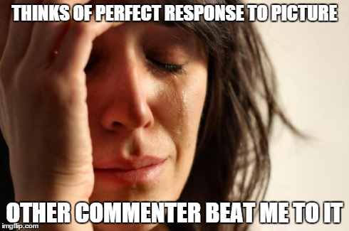 THINKS OF PERFECT RESPONSE TO PICTURE OTHER COMMENTER BEAT ME TO IT | image tagged in memes,first world problems | made w/ Imgflip meme maker