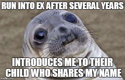 Awkward Moment Sealion | RUN INTO EX AFTER SEVERAL YEARS INTRODUCES ME TO THEIR CHILD WHO SHARES MY NAME | image tagged in memes,awkward moment sealion,AdviceAnimals | made w/ Imgflip meme maker