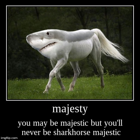 majestic sharkhorses are life | majesty | you may be majestic but you'll never be sharkhorse majestic | image tagged in funny,demotivationals,shark,horse,majestic | made w/ Imgflip demotivational maker