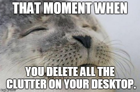 Happy Seal | THAT MOMENT WHEN YOU DELETE ALL THE CLUTTER ON YOUR DESKTOP. | image tagged in happy seal,AdviceAnimals | made w/ Imgflip meme maker