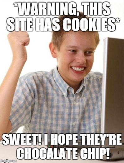 First Day On The Internet Kid Meme | *WARNING, THIS SITE HAS COOKIES* SWEET! I HOPE THEY'RE CHOCALATE CHIP! | image tagged in memes,first day on the internet kid | made w/ Imgflip meme maker