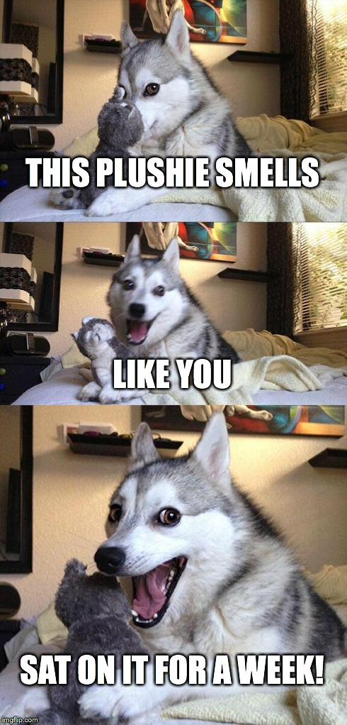 Plushie husky smells | THIS PLUSHIE SMELLS LIKE YOU SAT ON IT FOR A WEEK! | image tagged in memes,bad pun dog,plush toy,husky,furry | made w/ Imgflip meme maker