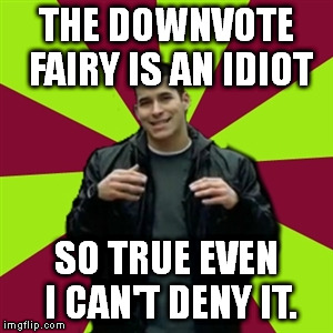 Contradictory Chris | THE DOWNVOTE FAIRY IS AN IDIOT SO TRUE EVEN I CAN'T DENY IT. | image tagged in memes,contradictory chris | made w/ Imgflip meme maker