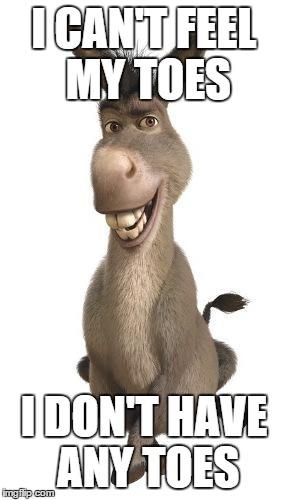 Donkey From Shrek Imgflip