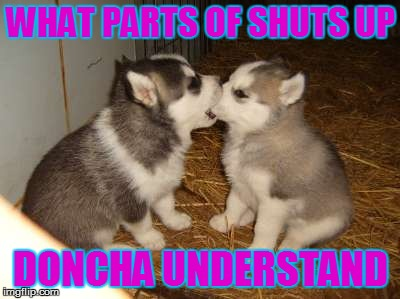 Cute Puppies | WHAT PARTS OF SHUTS UP DONCHA UNDERSTAND | image tagged in memes,cute puppies | made w/ Imgflip meme maker