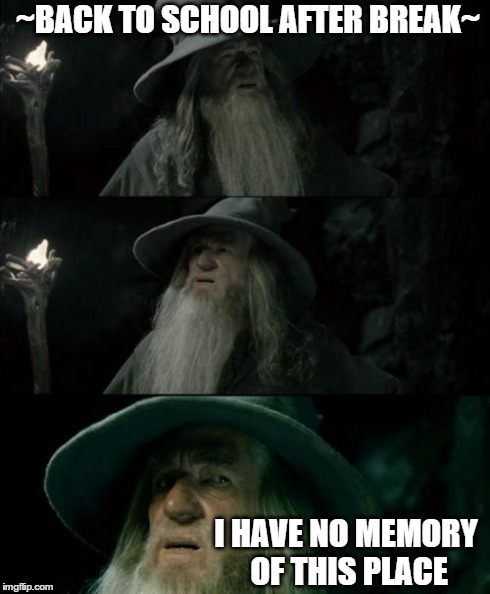 Confused Gandalf Meme | ~BACK TO SCHOOL AFTER BREAK~ I HAVE NO MEMORY OF THIS PLACE | image tagged in memes,confused gandalf | made w/ Imgflip meme maker