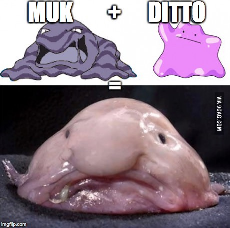 Real life pokemon transformation! | MUK        +      DITTO | image tagged in pokemon,math,blobfish,so true,funny,unexpected | made w/ Imgflip meme maker