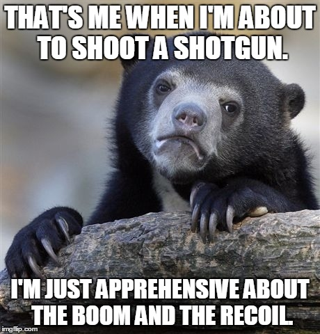Confession Bear Meme | THAT'S ME WHEN I'M ABOUT TO SHOOT A SHOTGUN. I'M JUST APPREHENSIVE ABOUT THE BOOM AND THE RECOIL. | image tagged in memes,confession bear | made w/ Imgflip meme maker
