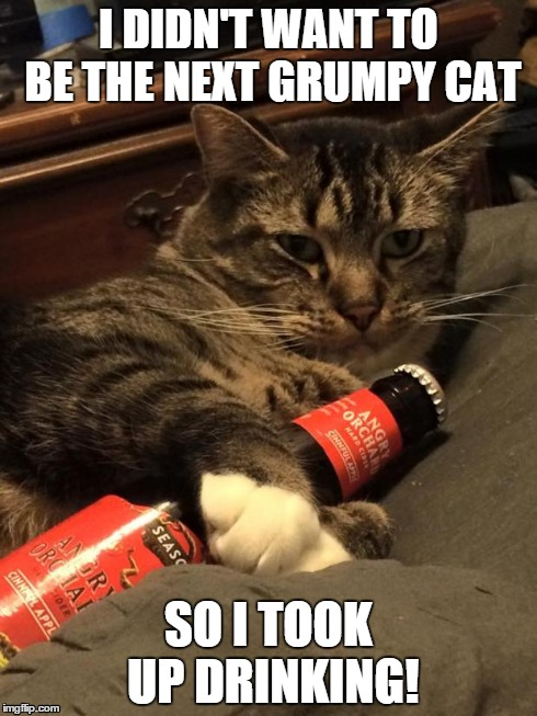 Funny Cat Drinking Meme : Cat drinking meme best of the funny