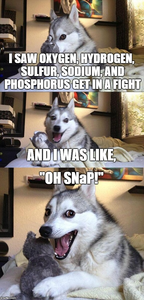 "Chemist Puns | I SAW OXYGEN, HYDROGEN, SULFUR, SODIUM, AND PHOSPHORUS GET IN A FIGHT AND I WAS LIKE, ""OH SNaP!"" 