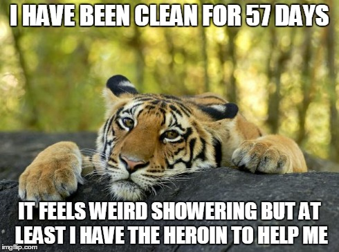 My life was in shambles. | I HAVE BEEN CLEAN FOR 57 DAYS IT FEELS WEIRD SHOWERING BUT AT LEAST I HAVE THE HEROIN TO HELP ME | image tagged in confession tiger,memes,funny | made w/ Imgflip meme maker