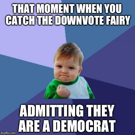 It's true. Link provided. | THAT MOMENT WHEN YOU CATCH THE DOWNVOTE FAIRY ADMITTING THEY ARE A DEMOCRAT | image tagged in memes,success kid,downvote fairy,democrats,liberal | made w/ Imgflip meme maker