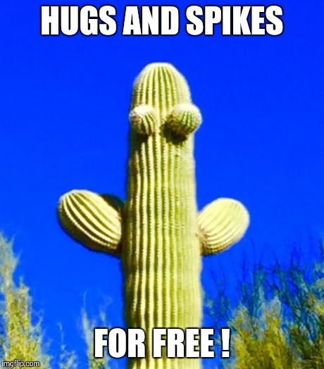 Huggy Cactus  | HUGS AND SPIKES FOR FREE ! | image tagged in huggy cactus | made w/ Imgflip meme maker
