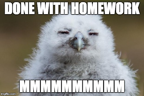 DONE WITH HOMEWORK MMMMMMMMMM | image tagged in mmmmm | made w/ Imgflip meme maker