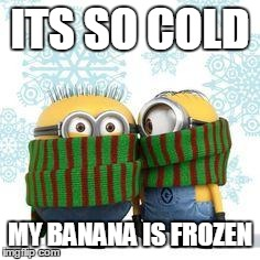 winter minions | ITS SO COLD MY BANANA IS FROZEN | image tagged in winter minions | made w/ Imgflip meme maker