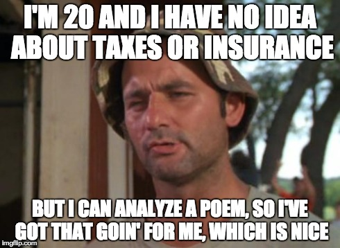 So I Got That Goin For Me Which Is Nice | I'M 20 AND I HAVE NO IDEA ABOUT TAXES OR INSURANCE BUT I CAN ANALYZE A POEM, SO I'VE GOT THAT GOIN' FOR ME, WHICH IS NICE | image tagged in memes,so i got that goin for me which is nice,funny | made w/ Imgflip meme maker