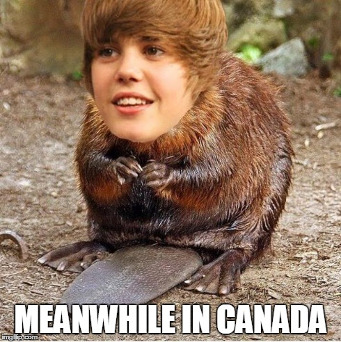 meanwhile in canada | MEANWHILE IN CANADA | image tagged in justin beaver,puns | made w/ Imgflip meme maker