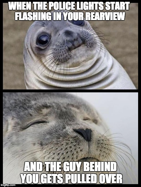 Double Seal Police Relief | WHEN THE POLICE LIGHTS START FLASHING IN YOUR REARVIEW AND THE GUY BEHIND YOU GETS PULLED OVER | image tagged in police,cops,awkward sealion,relief,satisfied seal,combo meme | made w/ Imgflip meme maker